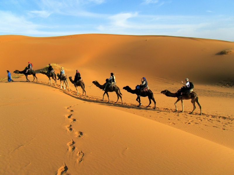 Camel trek (15km / 10 miles) in the desert with Oasis Lunch